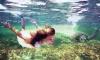 Новогодняя сказка на Галапагосских островах