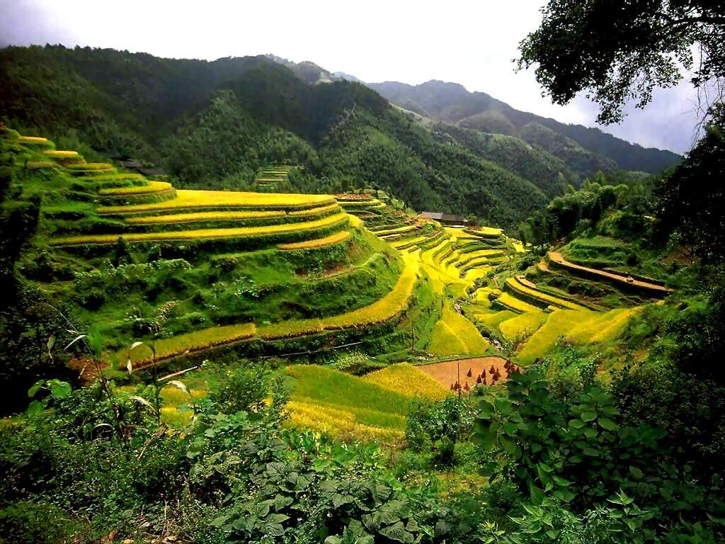Китай туры в китай туристические