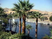 Egypt-8