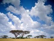 Kenya-11