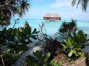 Maldivs-10