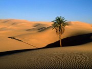 Morocco-17