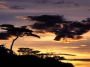 Tanzania-1